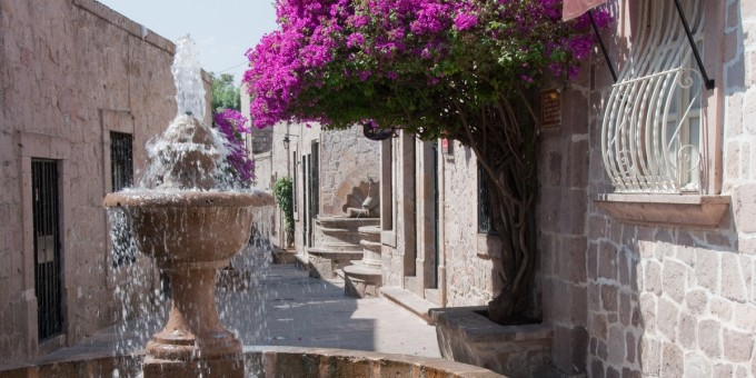 Colonial Fountain and Bougainvillea
