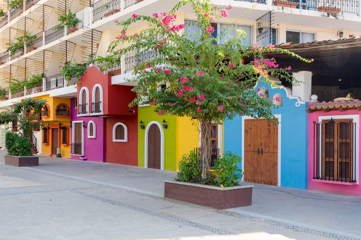 Spring climates in mexico mexperience for Colorful tree house