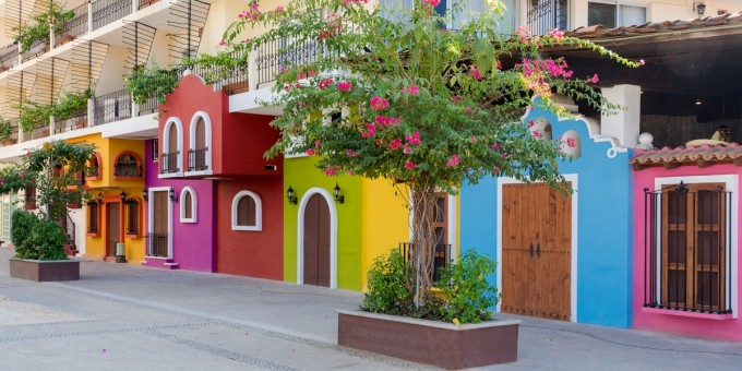 Colorful houses and trees in Mexico