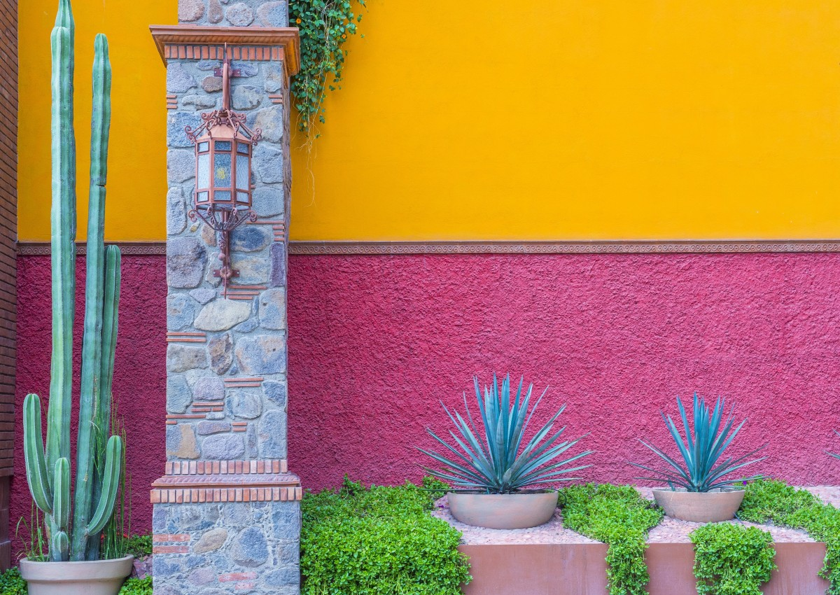 Inapam mexicos discount card for seniors mexperience a colorful wall in mexico magicingreecefo Image collections