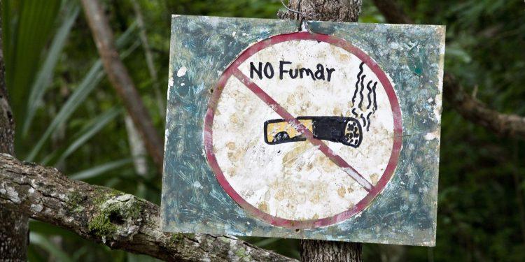 No Fumar: No Smoking Sign