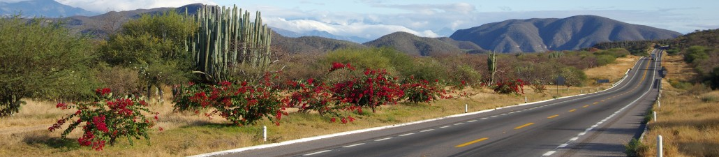 The Open Road in Mexico